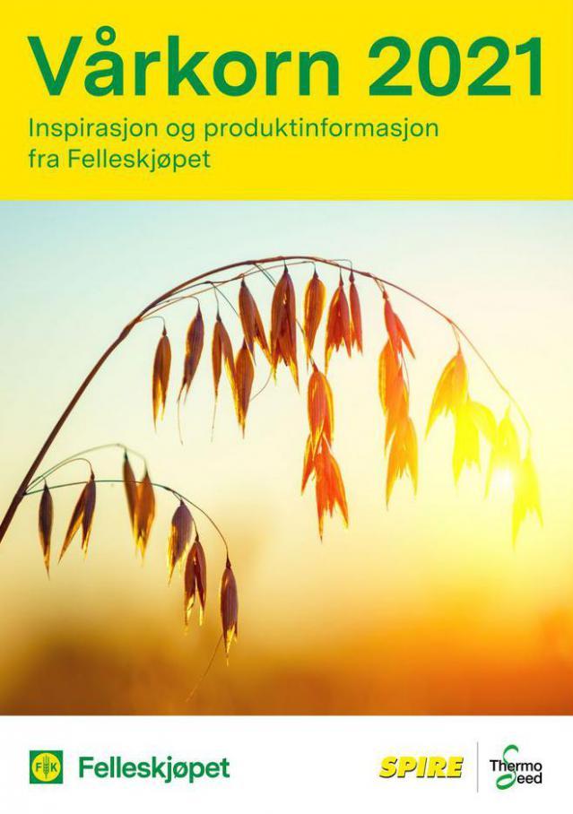 Vårkorn 2021 . Felleskjøpet (2021-05-16-2021-05-16)